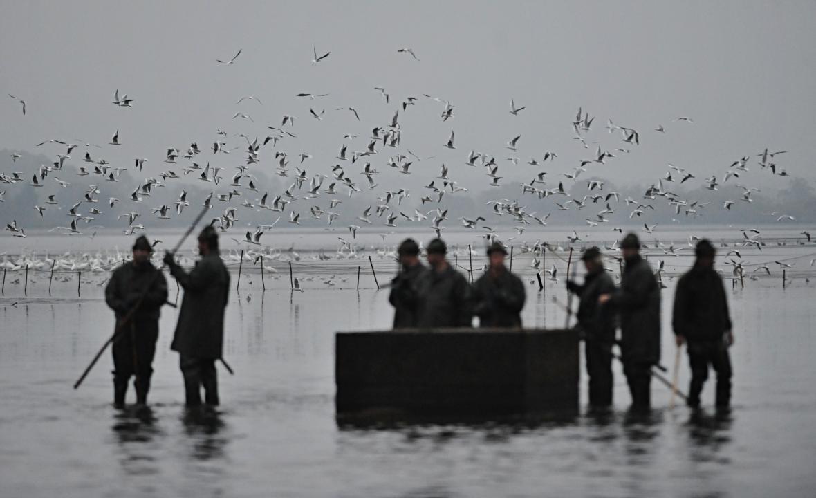 Výlov rybníka Rožmberk