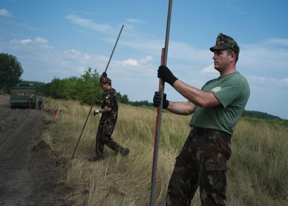 Stavba plotu při maďarsko-srbské hranici