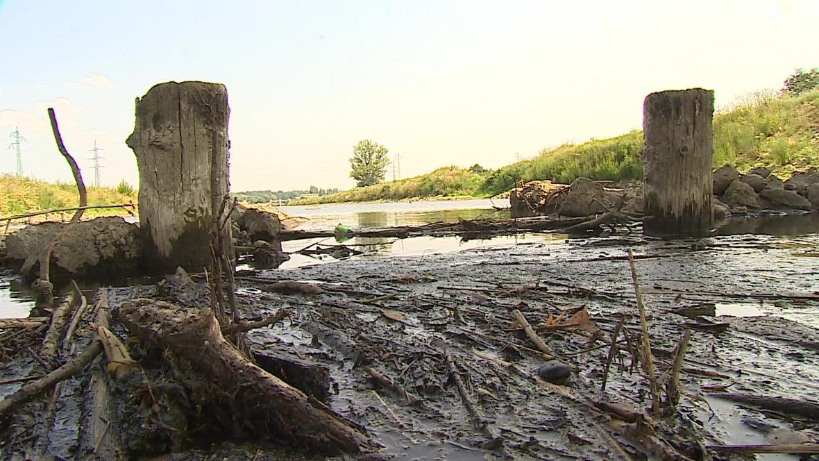 Zbytky Masarykova mostu u Hodonína