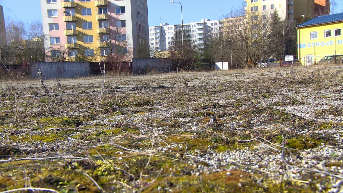 Pozemek, který klub nabízí městu za skoro 4 miliony