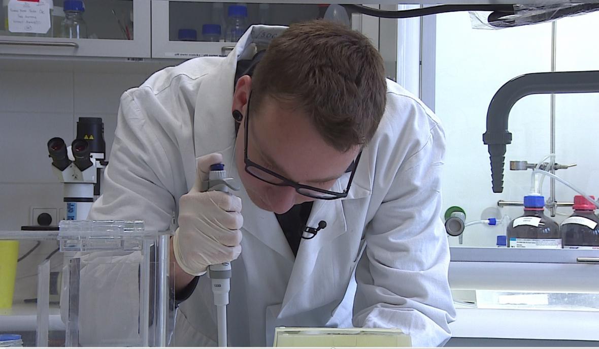 Mladý vědec zkoumá toxicitu sinic