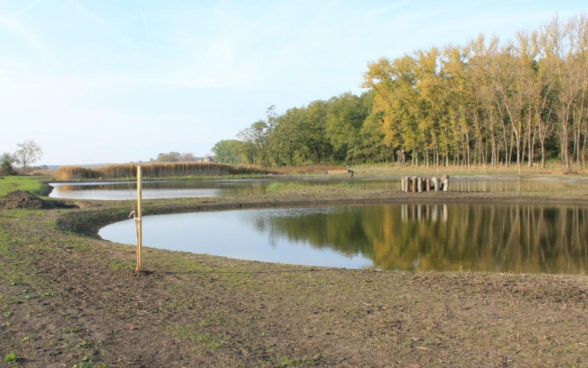 Mokřady v Hovoranech