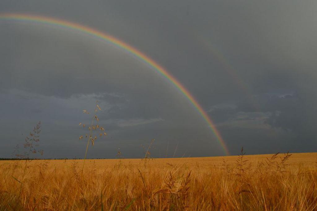 Duha po bouřce v Suchém na blanensku
