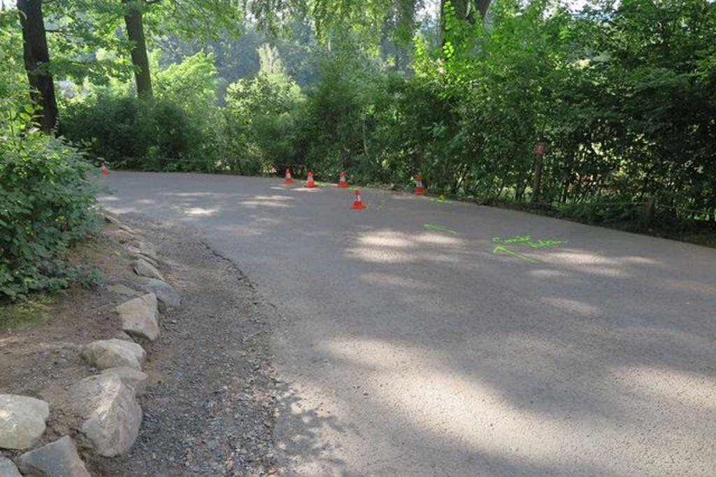 Nedělní nehoda vláčku v Zoo Lešná