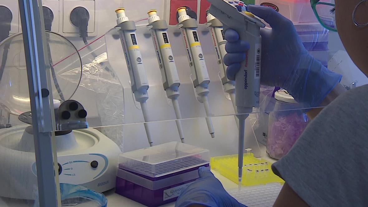 Program pracuje se vzorky odebraných tkání