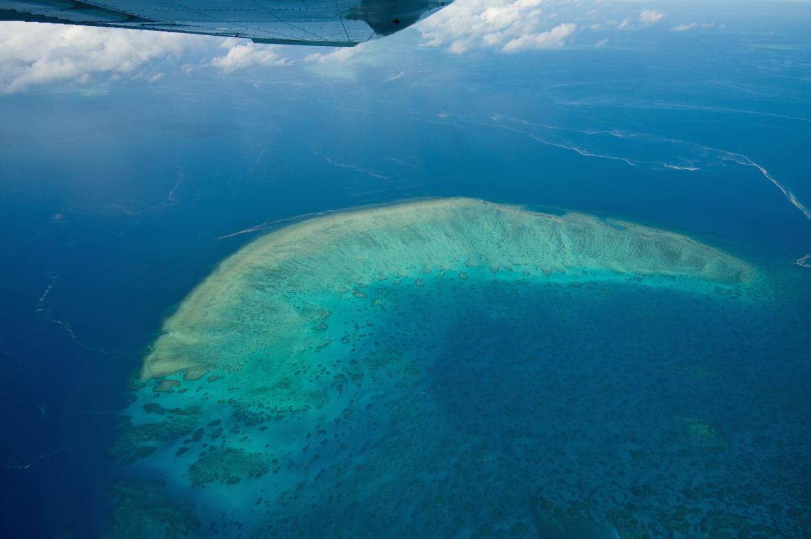 Velký bariérový útes v Austrálii