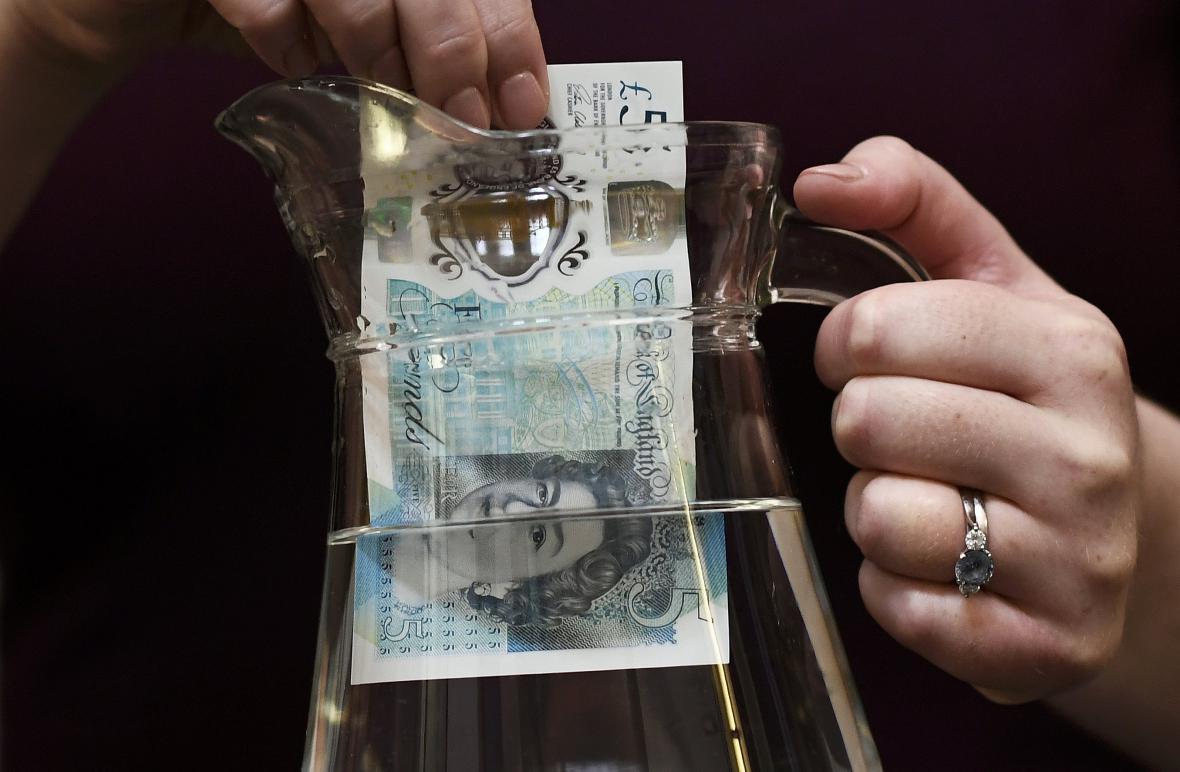 Nová pětilibrová plastová bankovka
