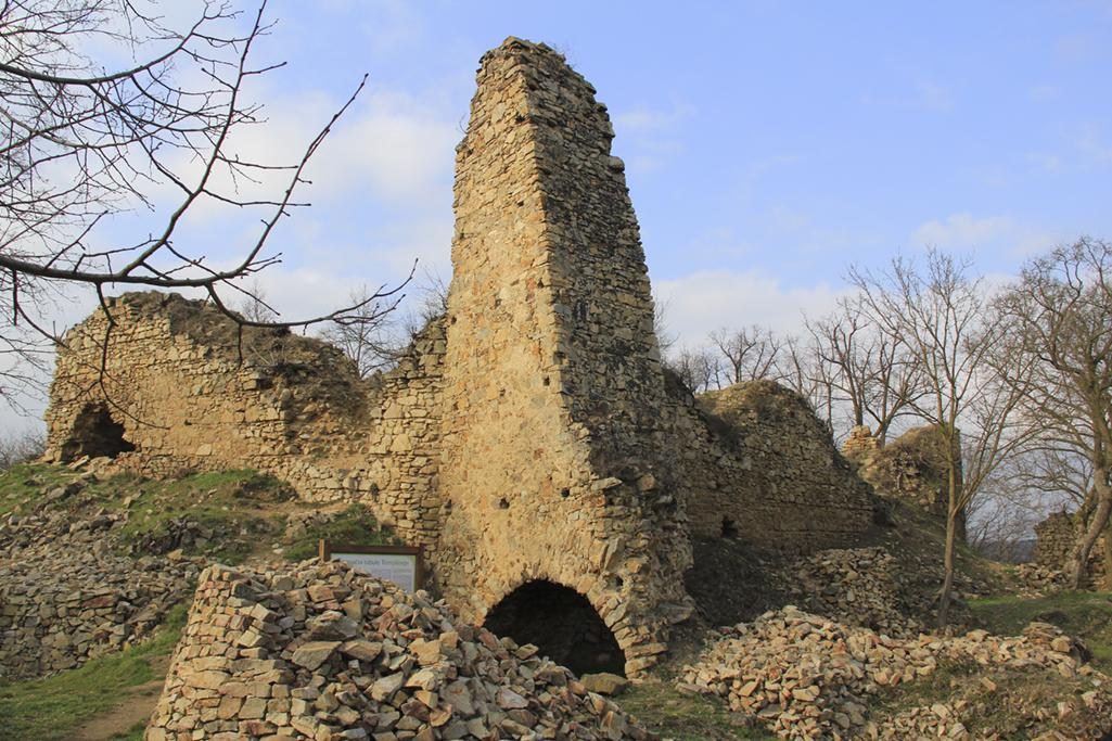 Patrimonio pro futuro 2016
