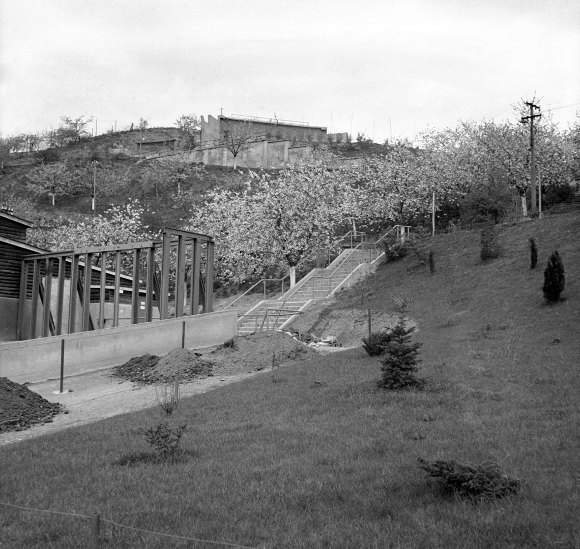 Zoo Praha na historických snímcích