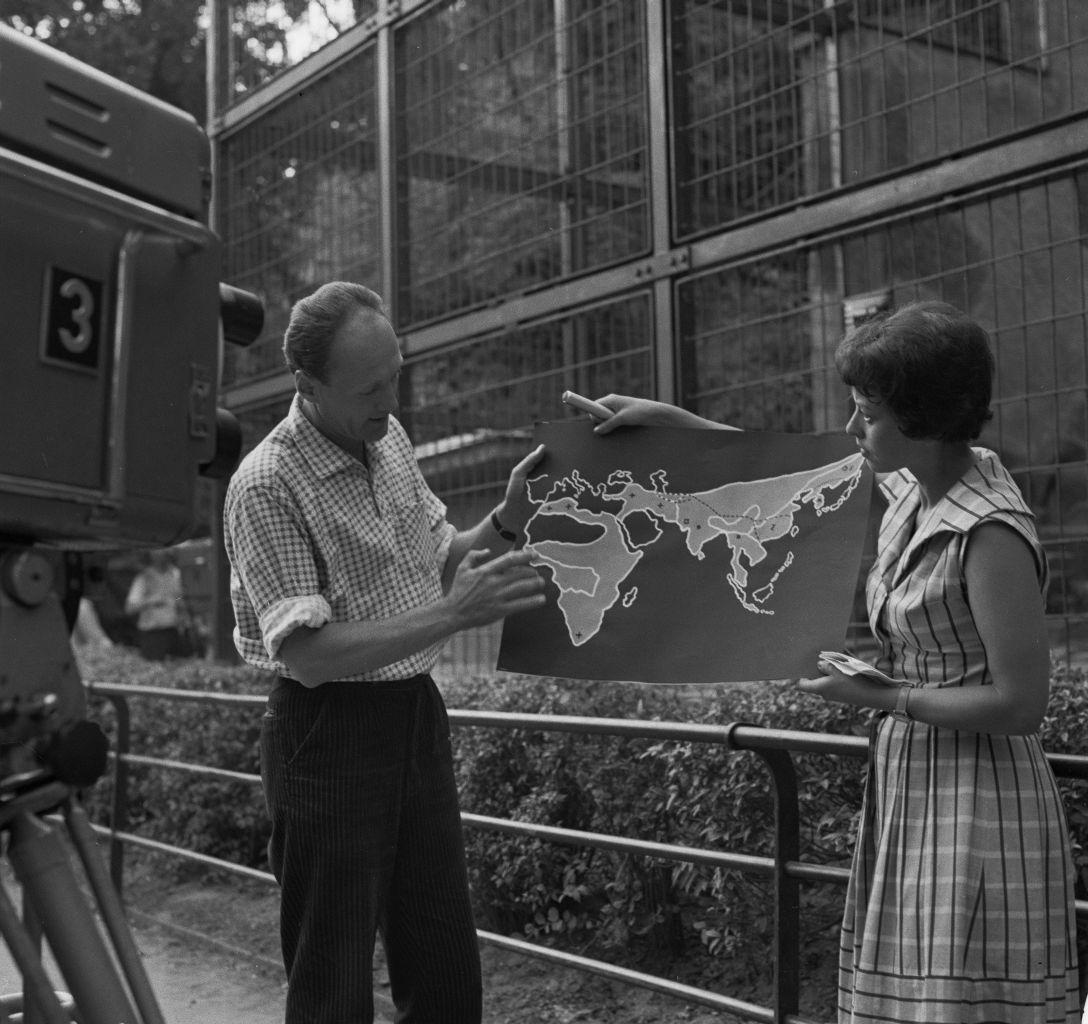 Pořad Zvířátka pod lupou z roku 1963