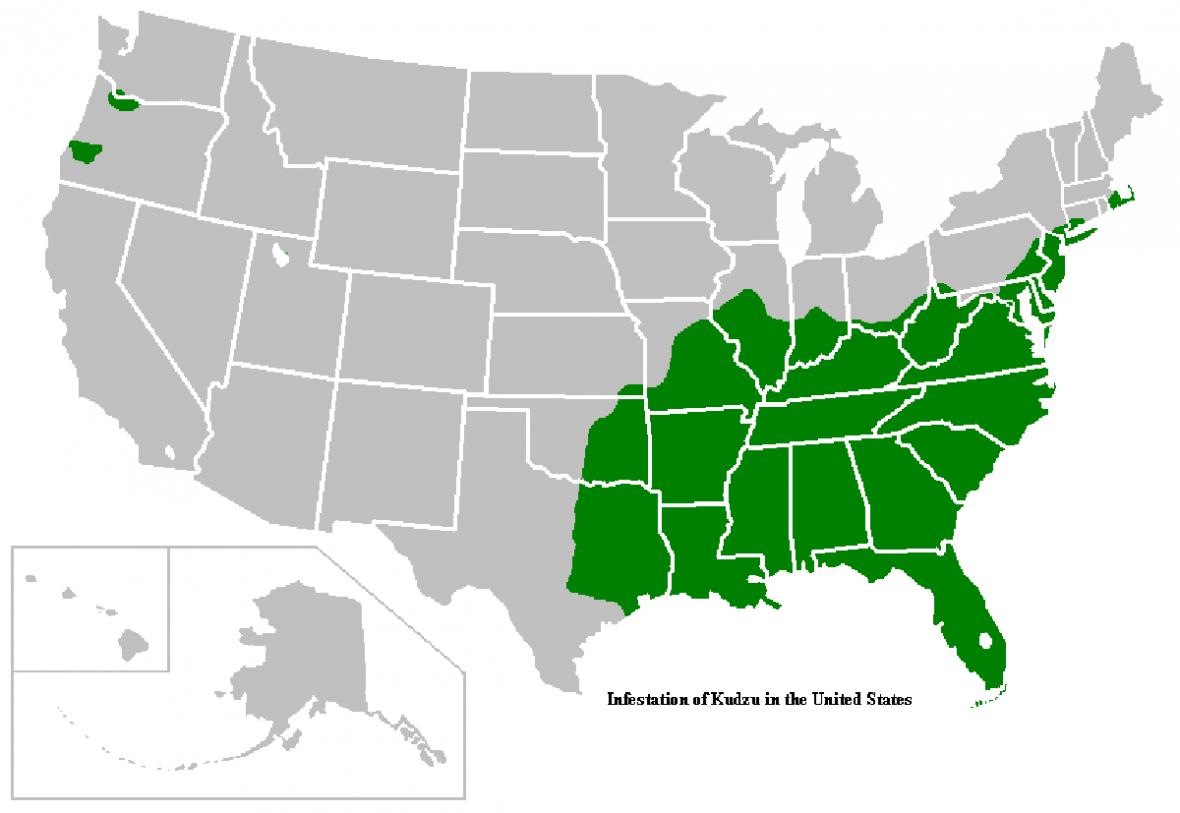 Rozšíření peurarie v USA