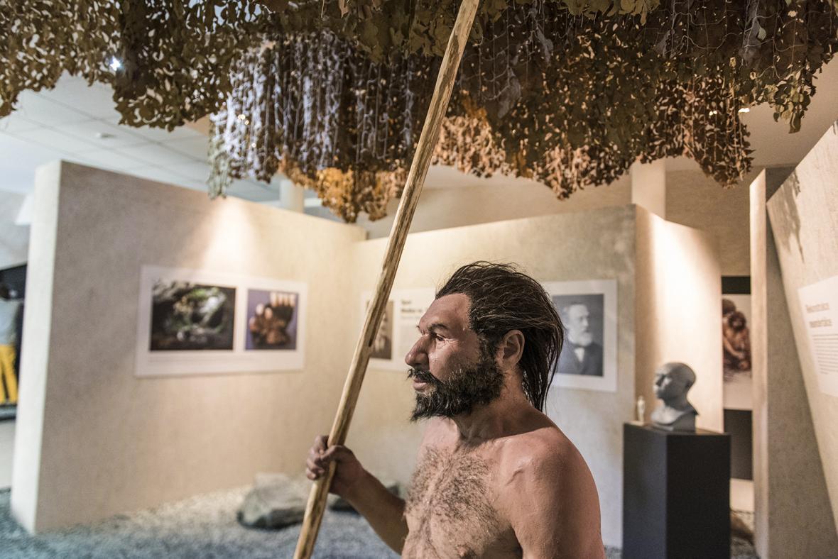 Výstava Vítejte u neandrtálců