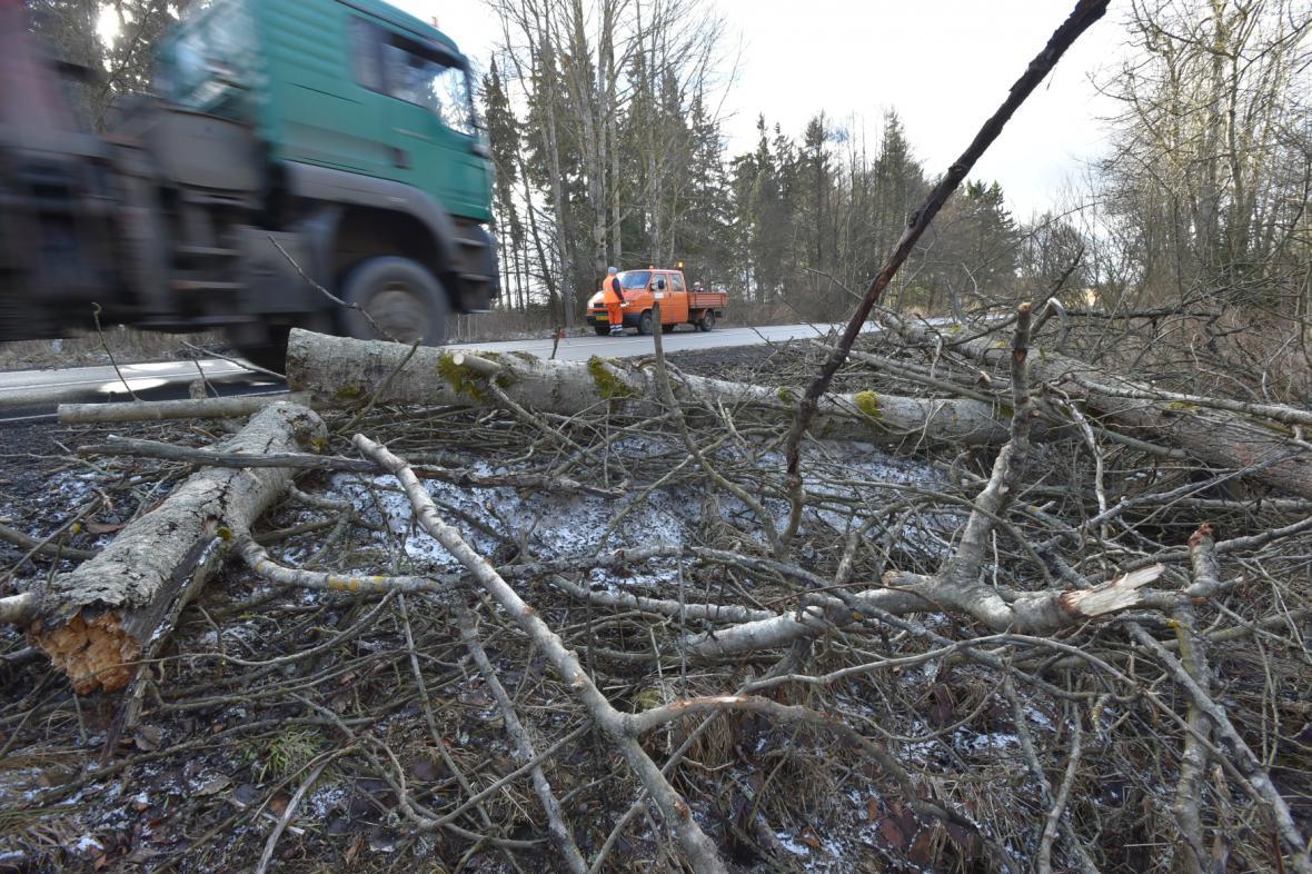 Popadané stromy u silnice u Mnichova na Chebsku