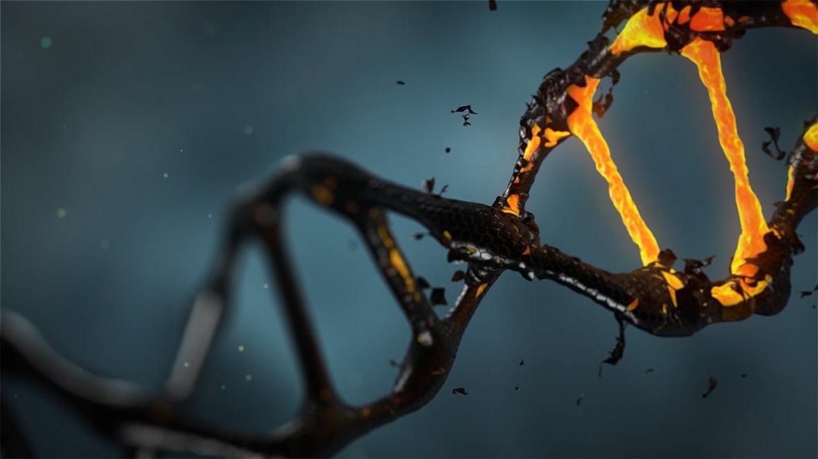 Poškození DNA