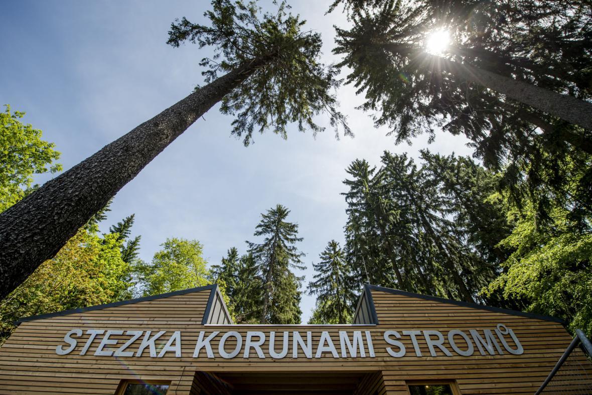V Janských Lázních otevřena unikátní stezka korunami stromů