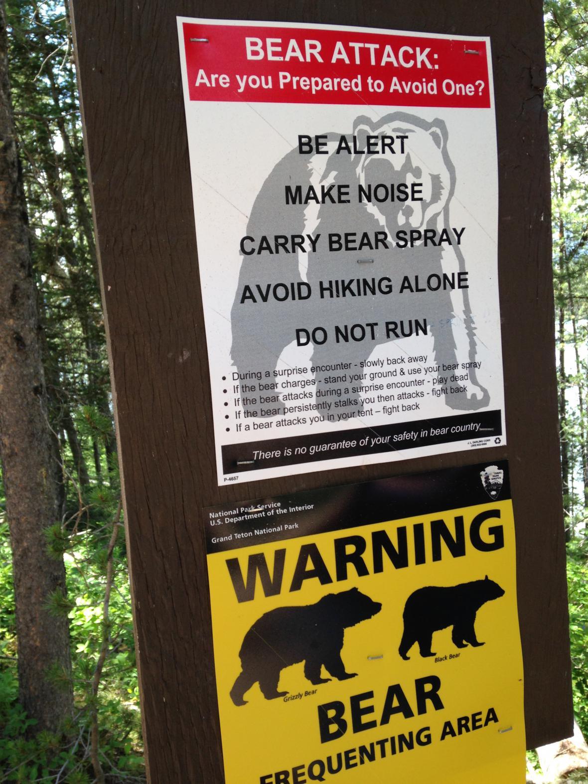 Grand Teton: varování před medvědy