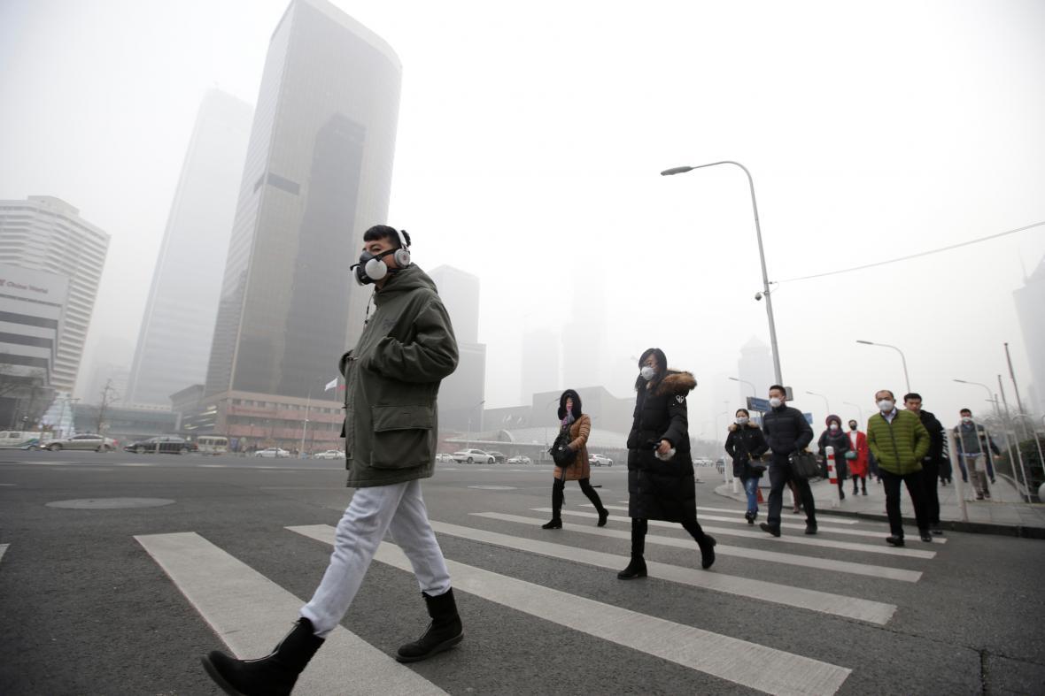 Nové lesní město na jihu Číny by mělo být pokryto jedním milionem rostlin a 40 000 stromy.