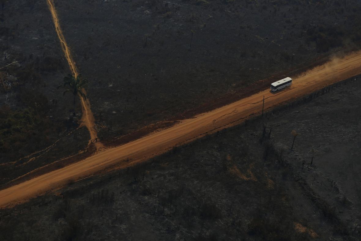 Ničení deštného pralesa v jižní Amazonii