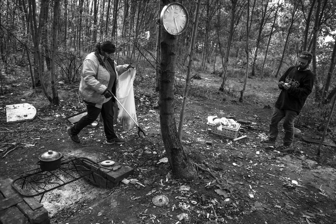 Likvidace bezdomoveckých příbytků a úklid černých skládek v Plzni
