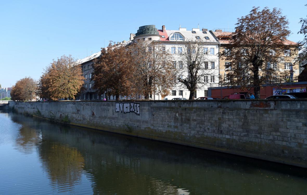 Kácení stromů na břehu řeky Moravy