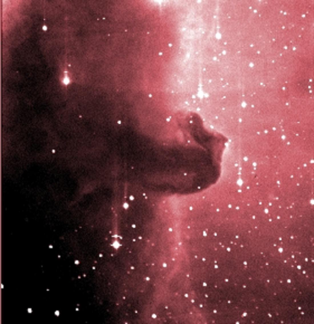 Snímek mlhoviny Koňská hlava (upraven do nepravých barev) byl pořízen v noci 28. února 2003