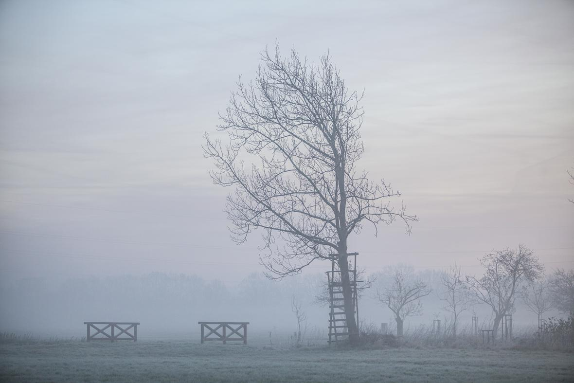 Národní hřebčín Kladruby a okolní krajina