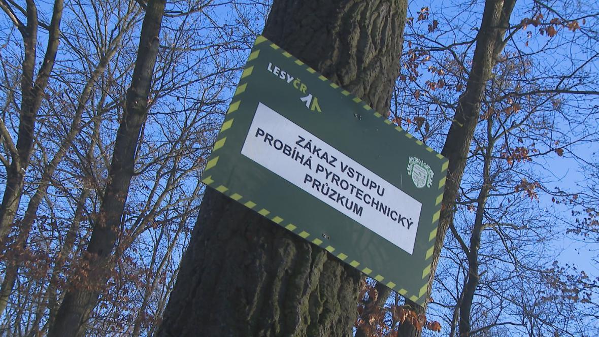 Pyrotechnický průzkum v Bořím lese