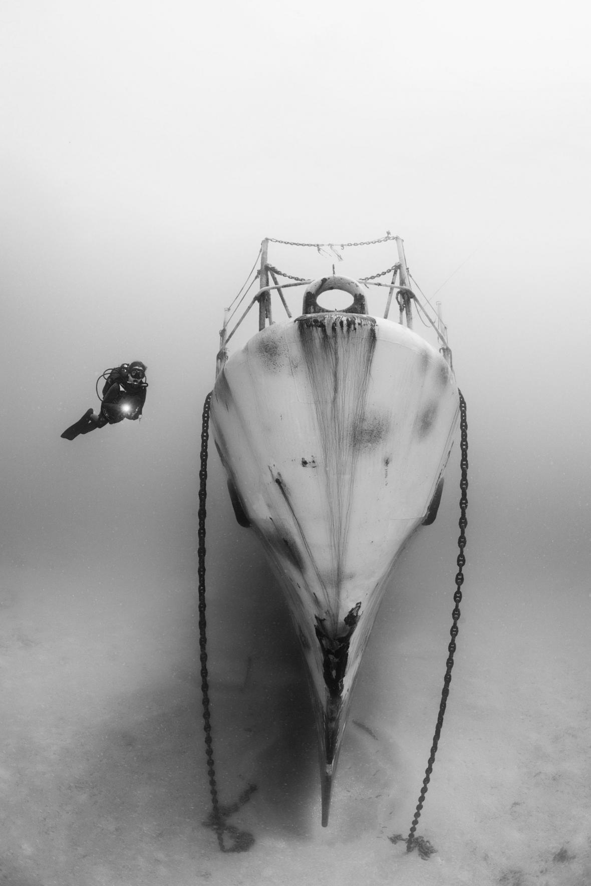 Nejlepší podvodní snímky: Černo-bílé fotografie