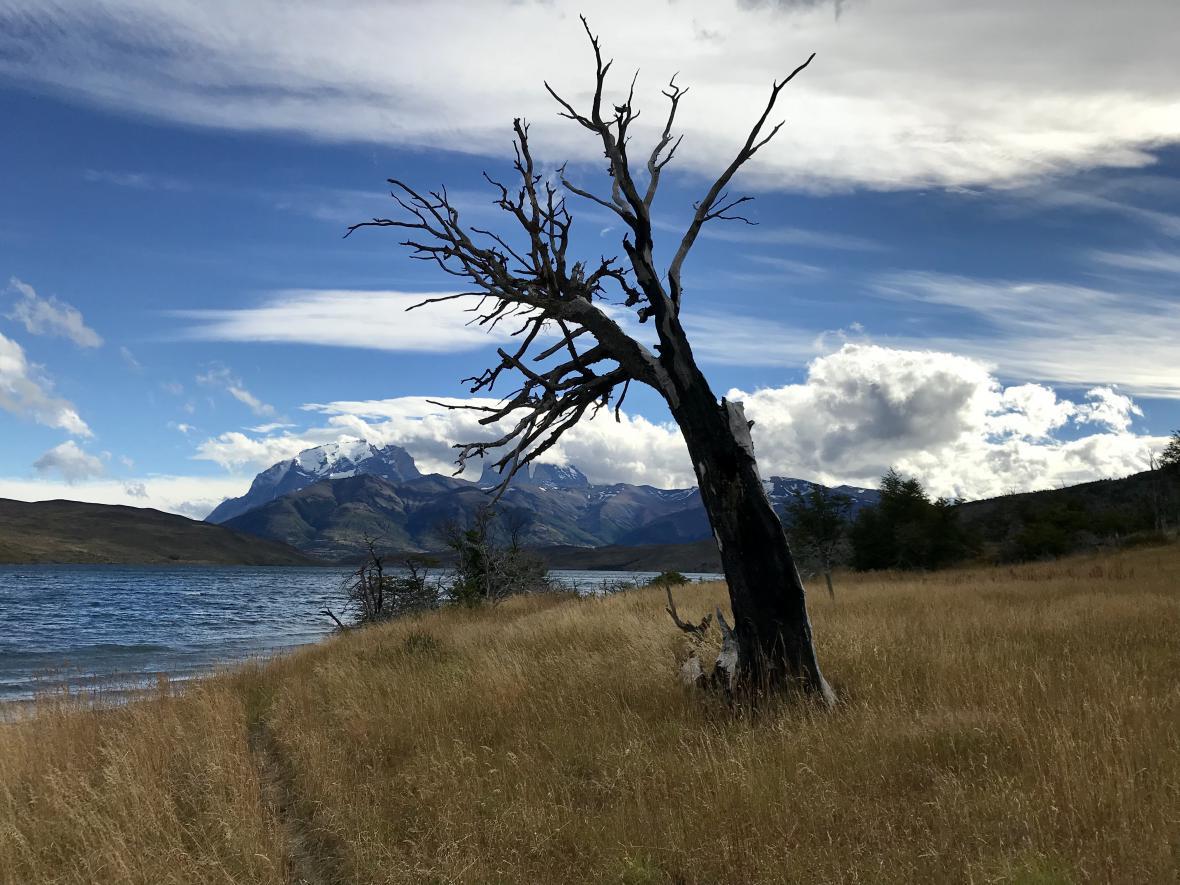 Puerto Natales a park Torres del Paine