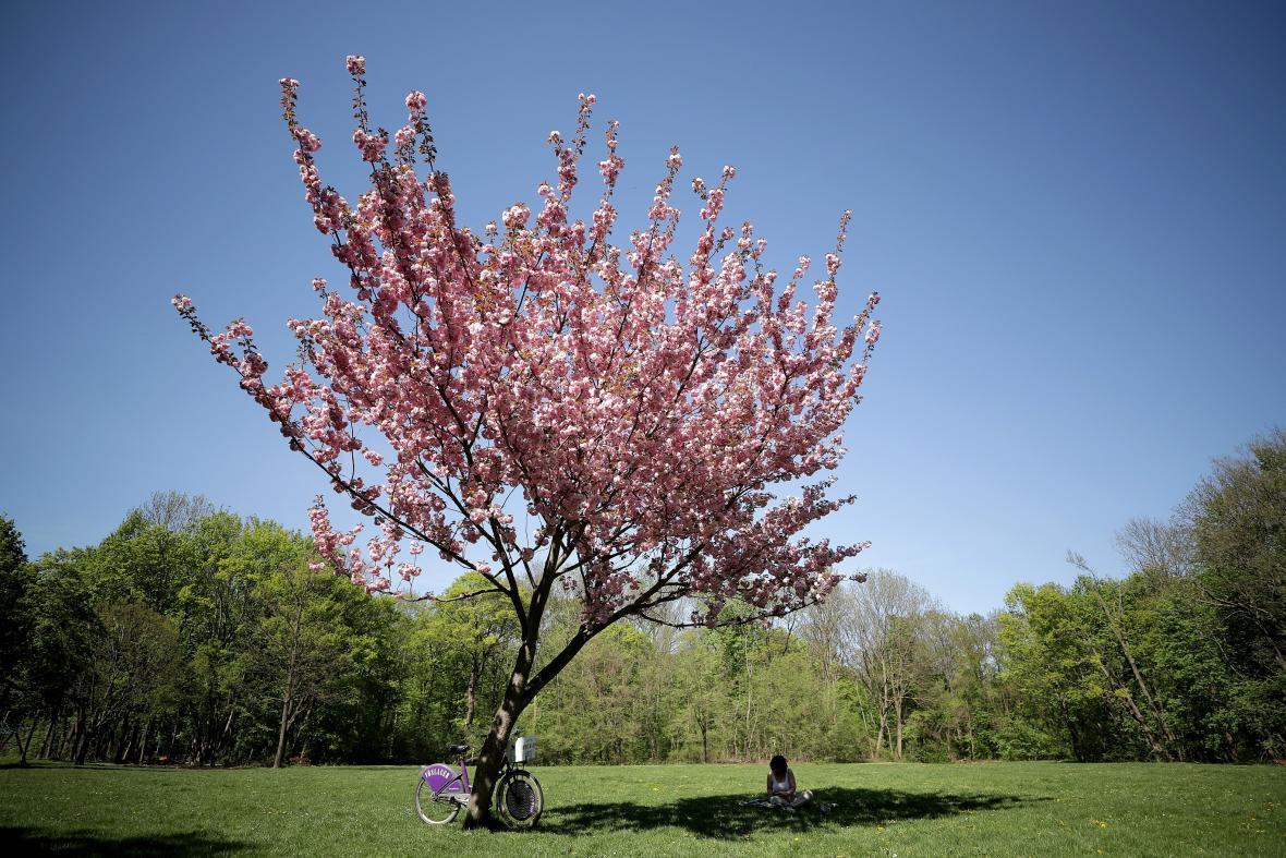 Meteorologové slibují slunečný jarní víkend
