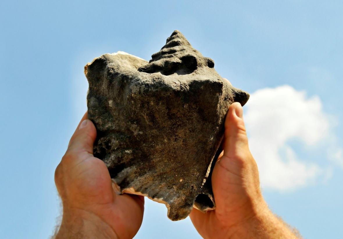 Archeologické nálezy na Přerovsku