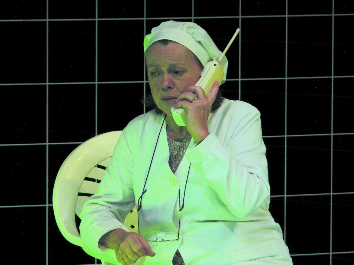 Iva Janžurová a její role