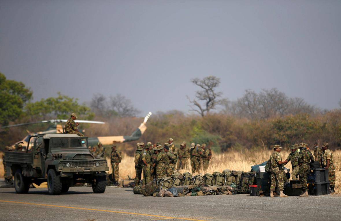 Masakr slonů v Botswaně