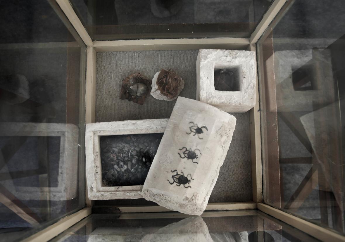 Nálezy ze sedmi nově objevených hrobek v Egyptě