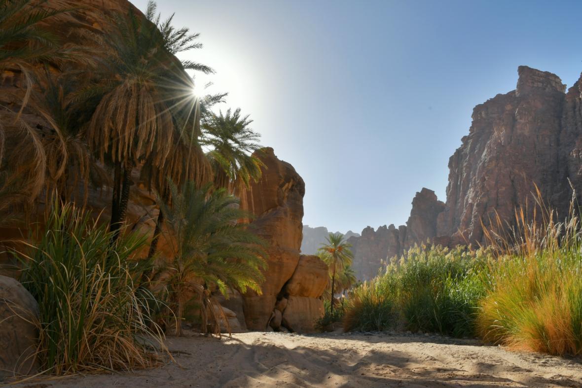Údolí Al-Disah