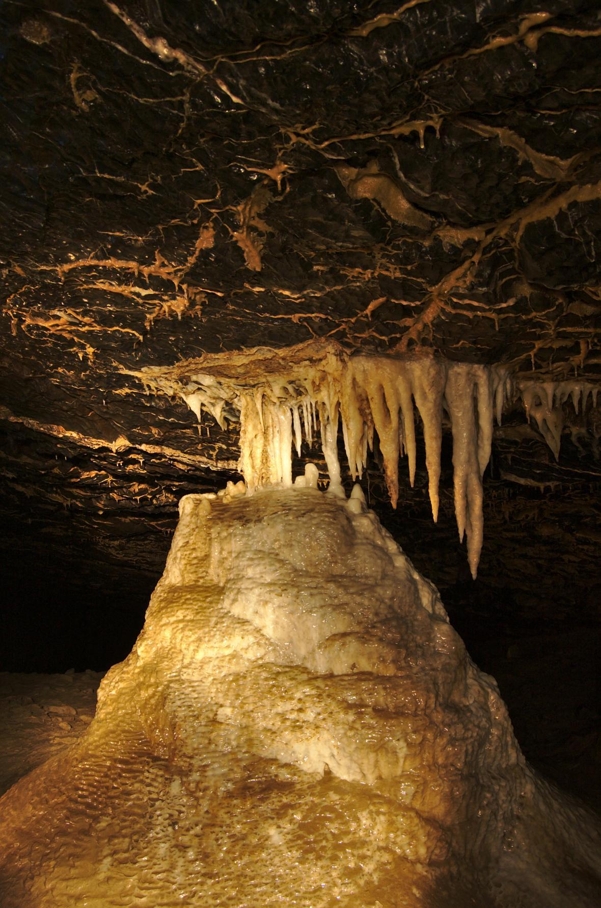Klon z Stékající dešťová voda ničí krápníky v Amatérské jeskyni