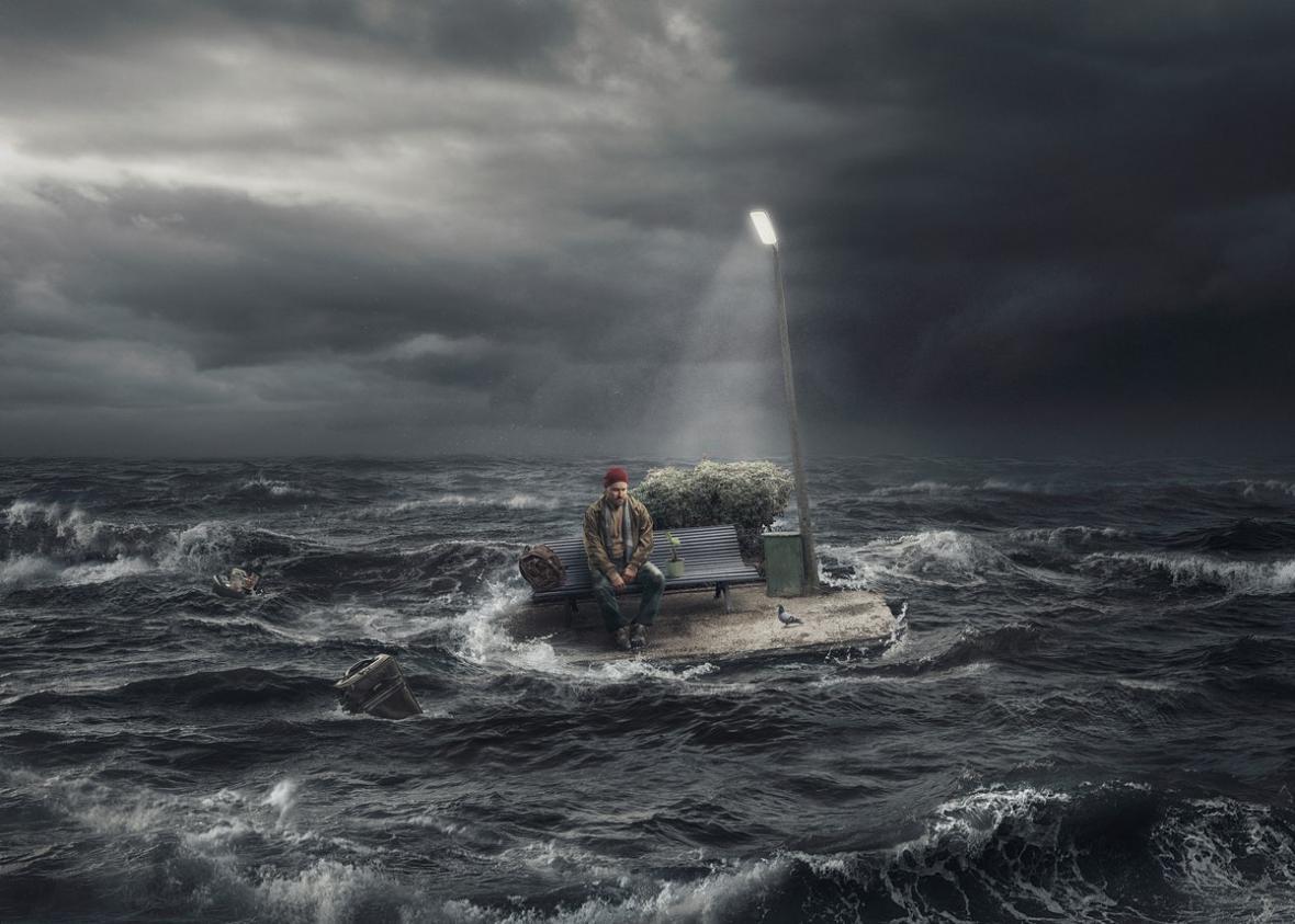 Finalisté Světového fotografického poháru