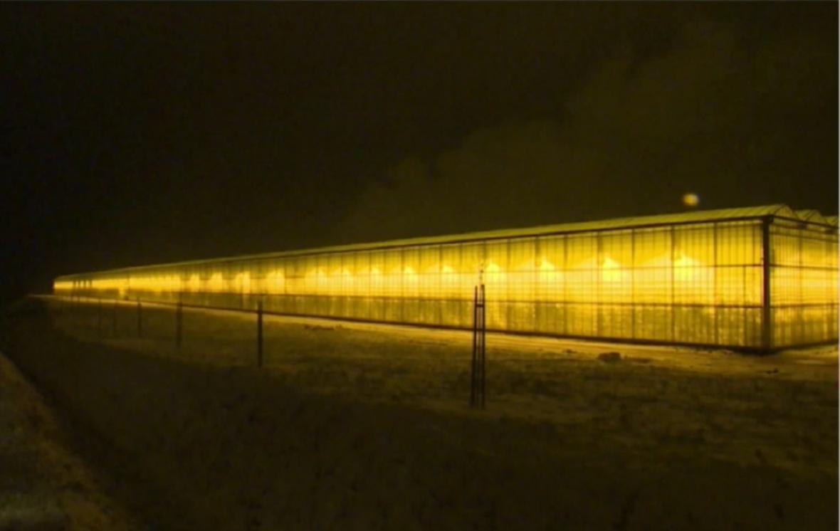 Polské skleníky u hranic