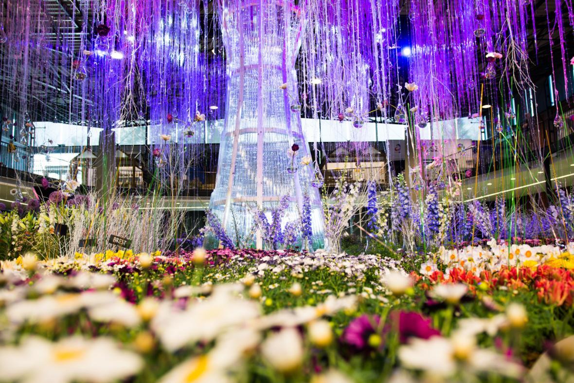V Olomouci začala jarní etapa květinové výstavy Flora