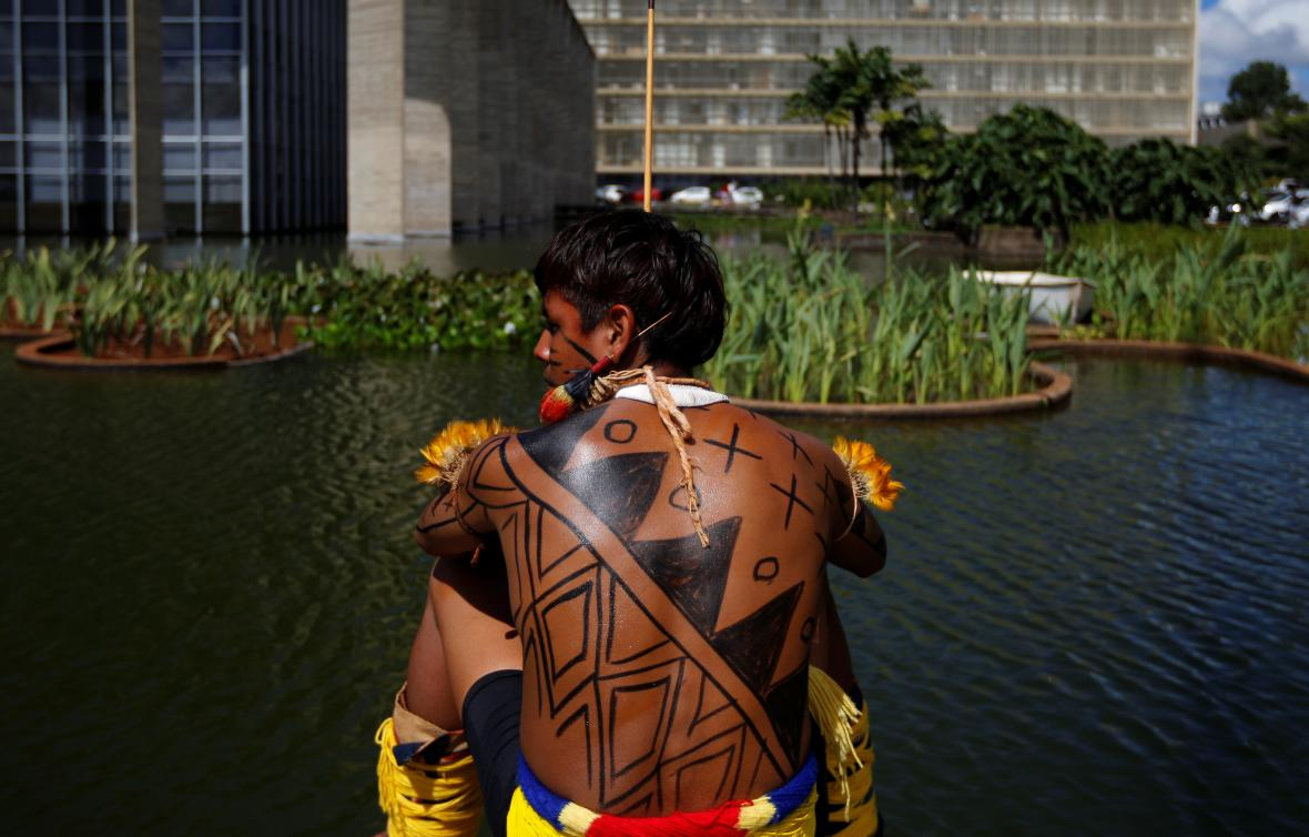 Protest brazilských domorodců