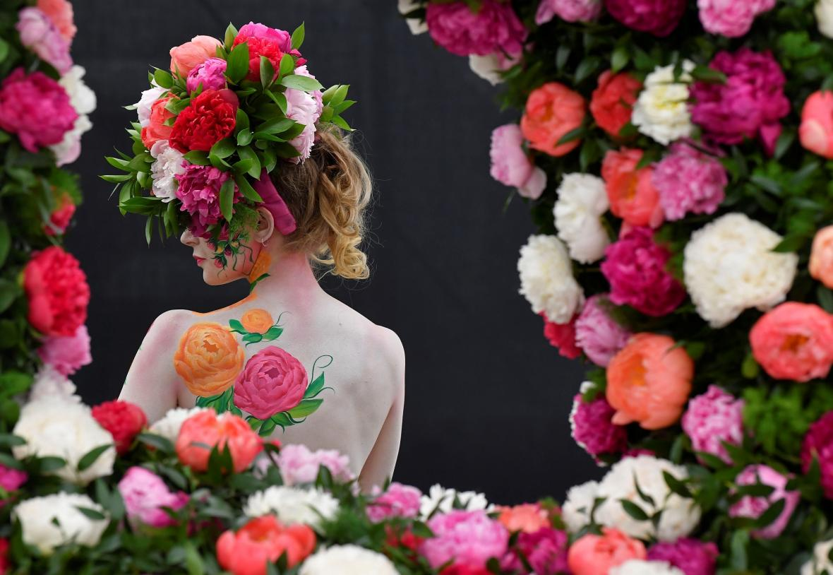 Chelsea Flower Show 2019