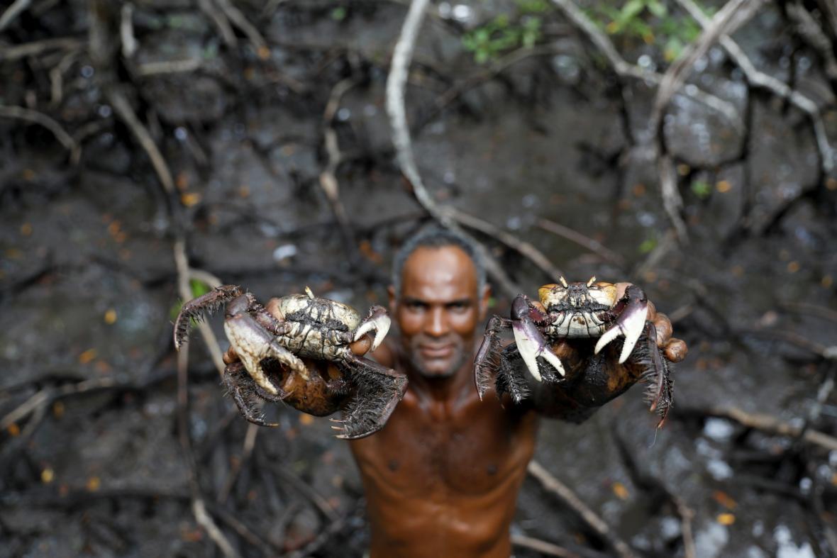 Za lovci krabů