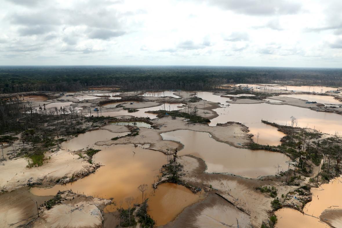 Deforestace Amazonie