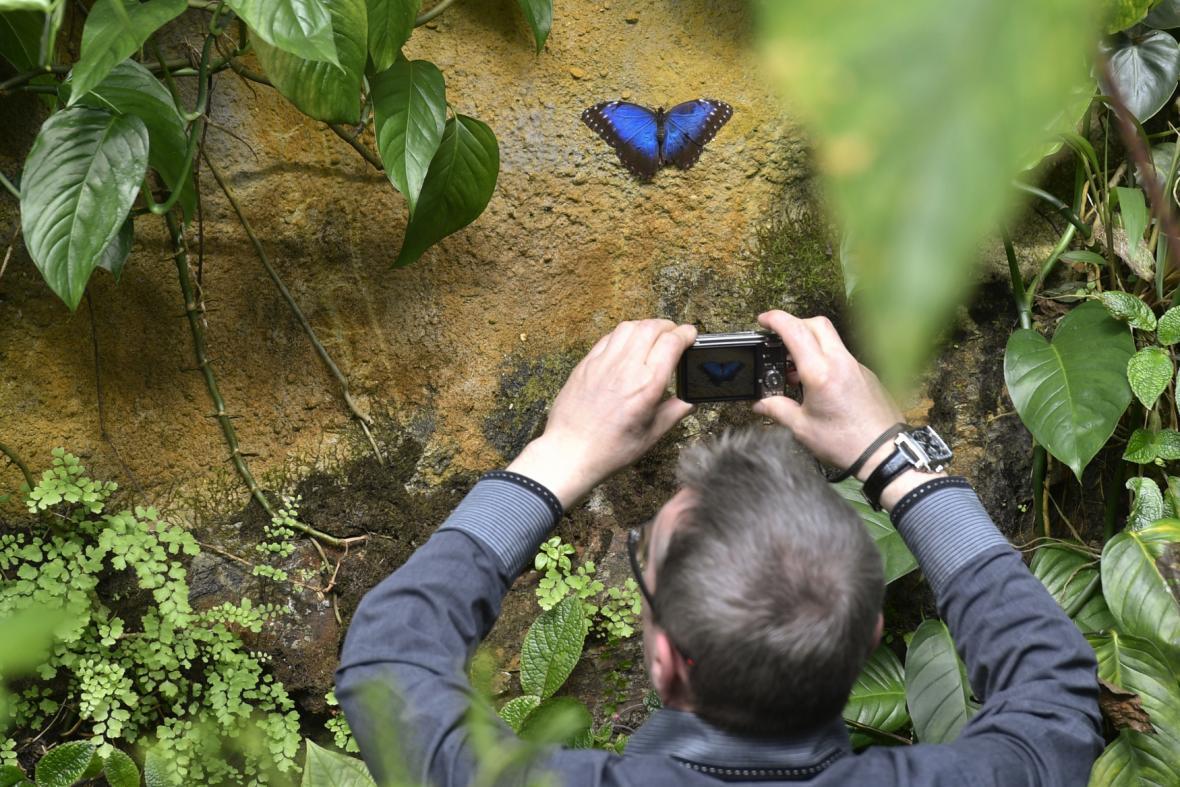 Botanická zahrada hl. m. Prahy slaví 50 let