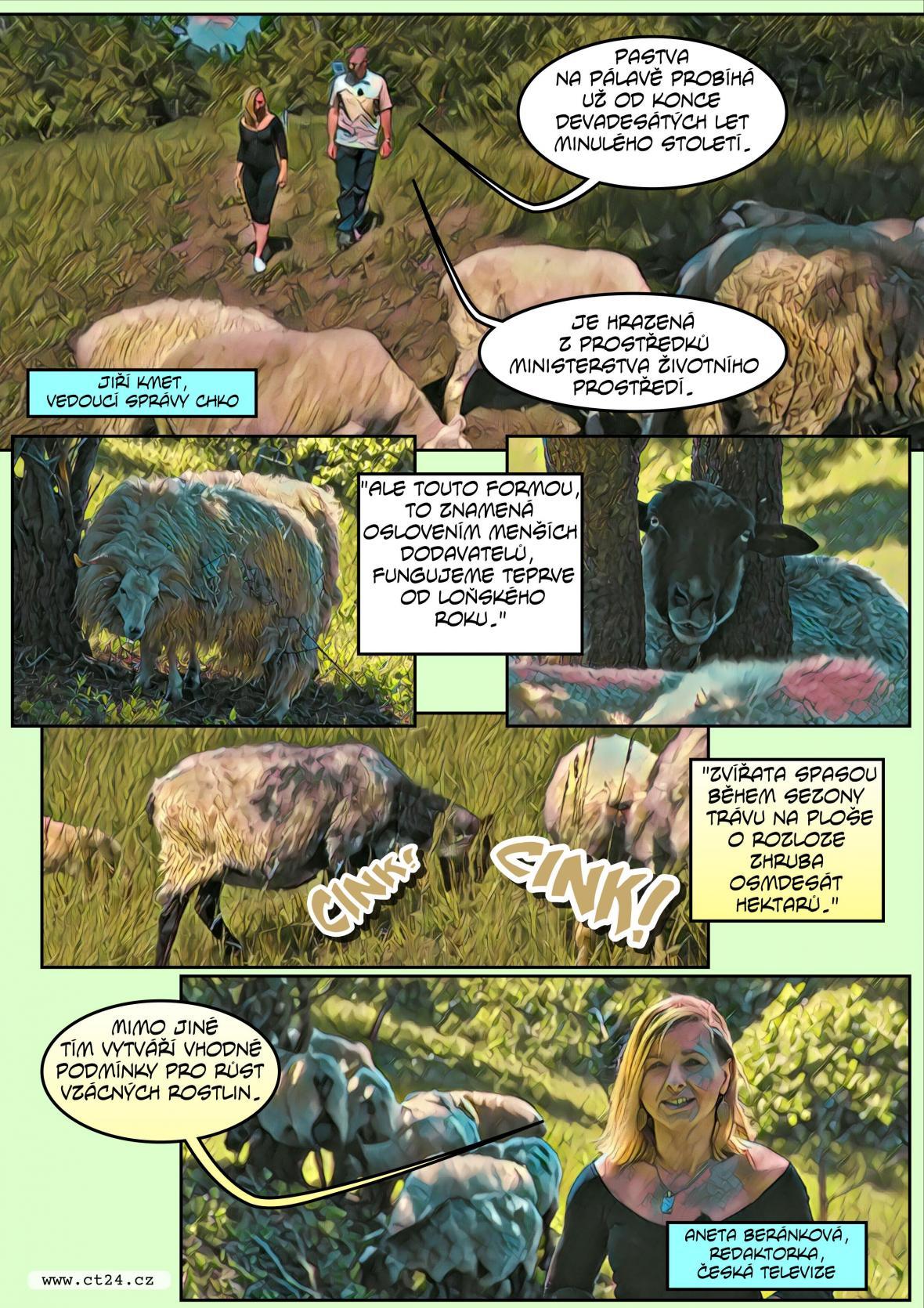 Komiks: Pastevectví na Pálavě