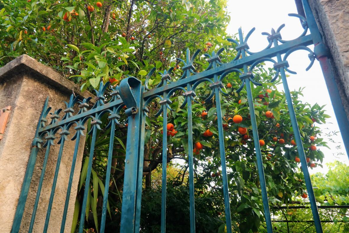Francouzský Menton je městečkem zahrad a květin