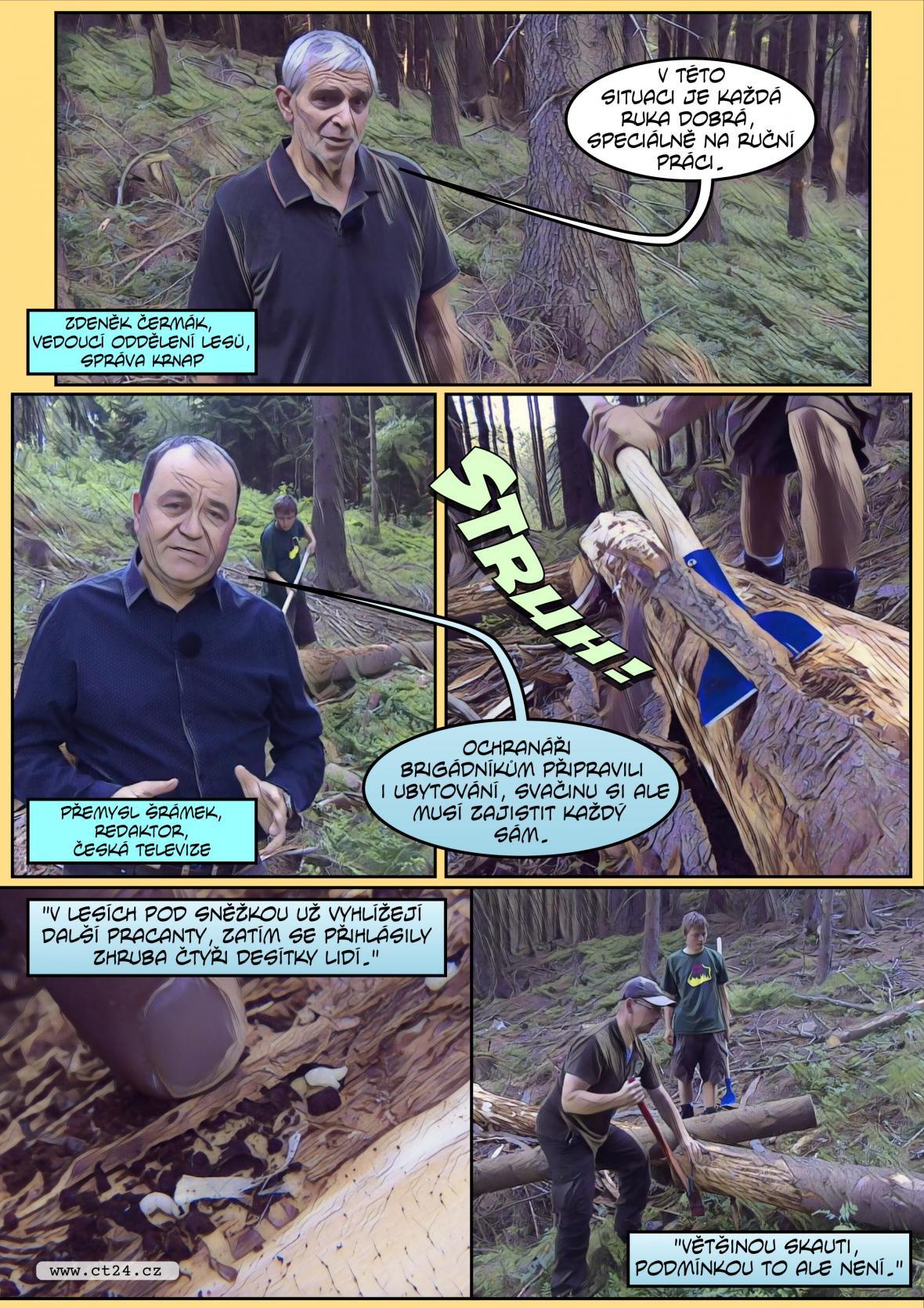 Komiks: Skauti pomáhají v boji s kůrovcem