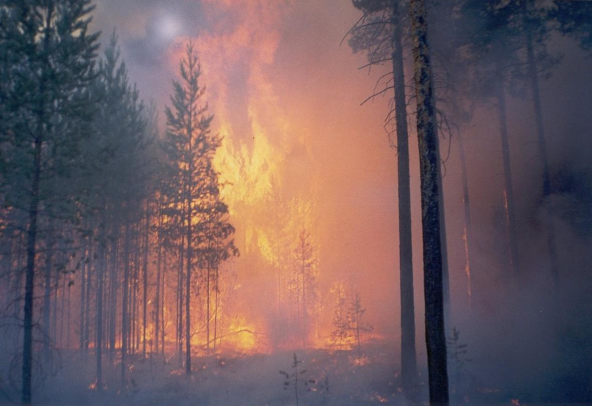 Požár v Krasnojarském kraji