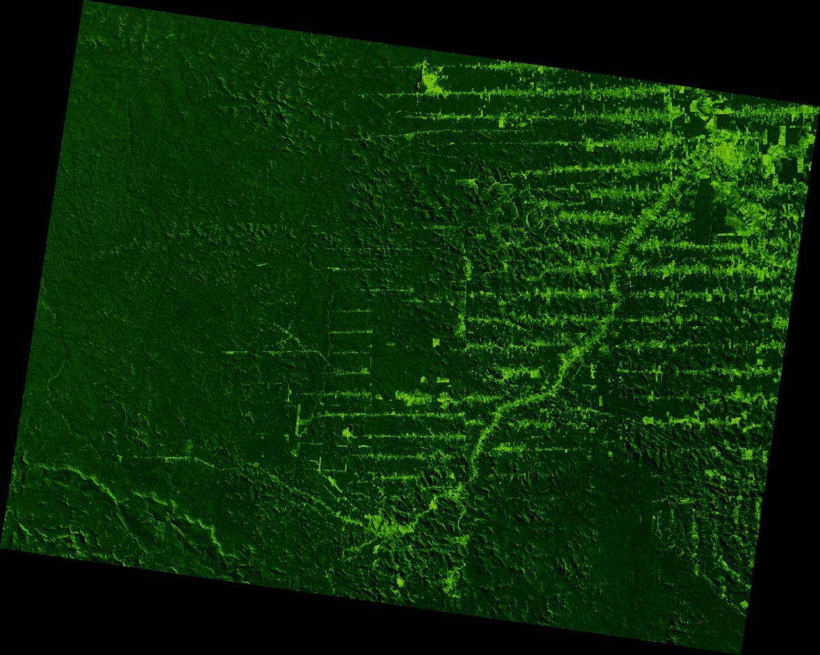 Deforestace ve státě Rondonie v letech 1975-2001