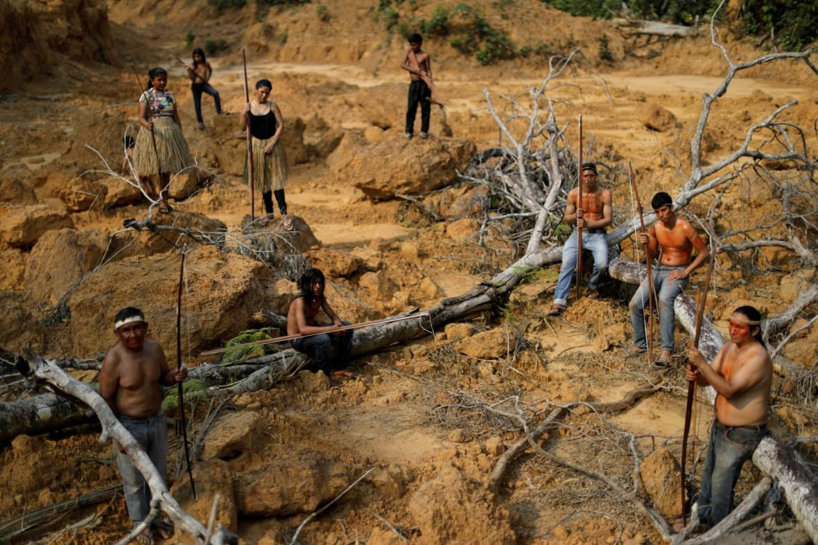 Pralesy v ohrožení
